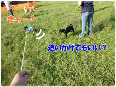 9_19+125_convert_20110920112114.jpg