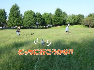 9_19+151_convert_20110919175326.jpg