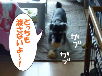 9_20+014_convert_20110920112503.jpg