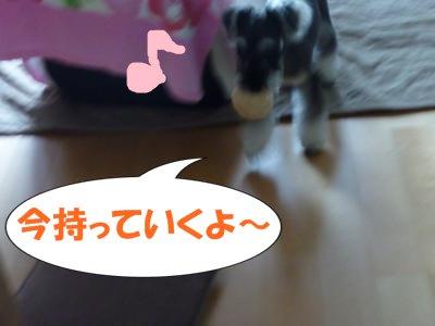 9_20+021_convert_20110920115254.jpg