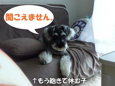 9_20+026_convert_20110920112718.jpg