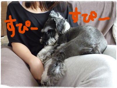 9_24+004_convert_20110924100752.jpg