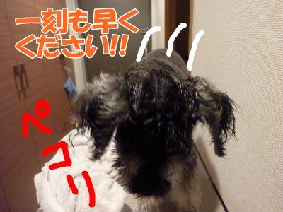 9_26+006_convert_20110926094112.jpg