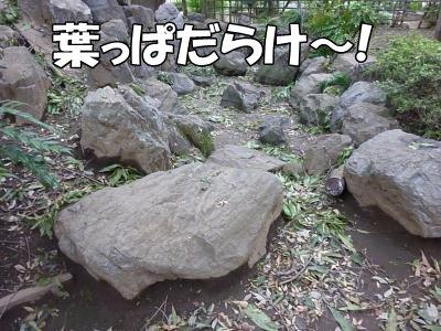 9_27+021_convert_20110927100134.jpg