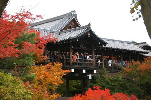 ちょっと気の早い京都紅葉スポット紹介