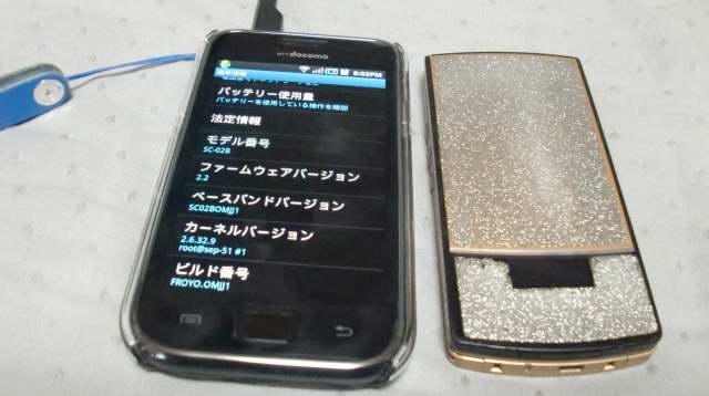 201012110001.JPG