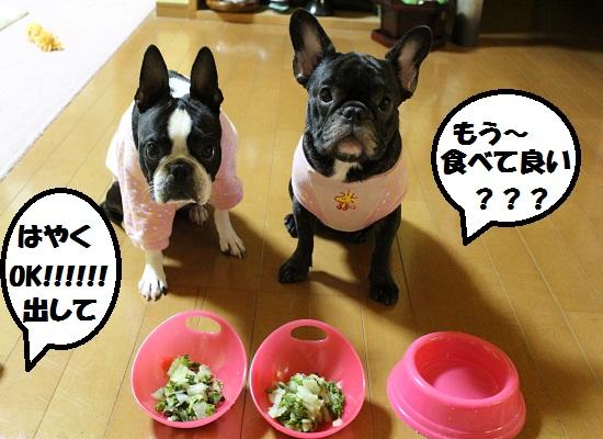 もう食べて良い?