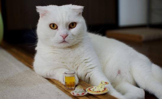 やっぱり暑くなったらビールやなーー324-23えdddd