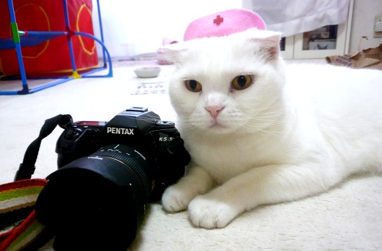 ママ使い過ぎでカメラが悲鳴あげてたよ