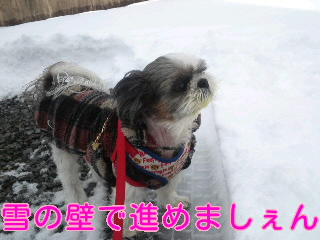 moblog_288cee7f.jpg