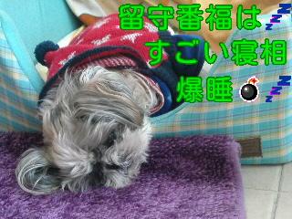 moblog_42ccad44.jpg