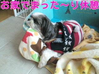 moblog_ece9a9b3.jpg