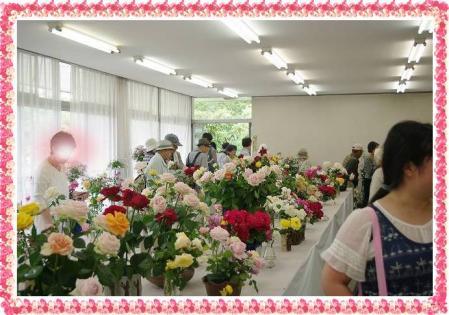 rose519 012