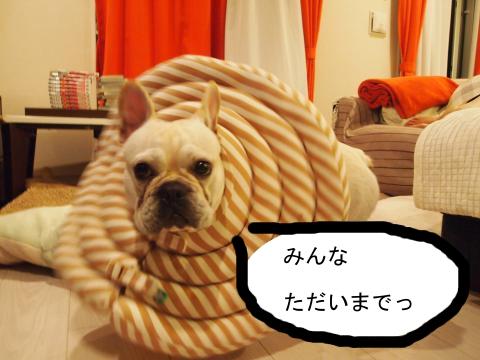 PA163594_convert_20111016181932.jpg