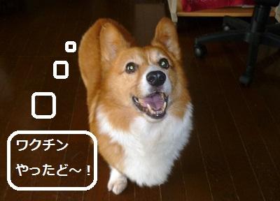 2011_0912_122211-P1110323.jpg