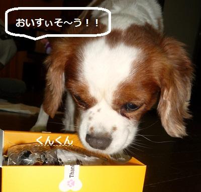 2011_0923_213858-P1110375.jpg