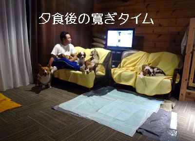 2011_1024_204123-P1110560.jpg