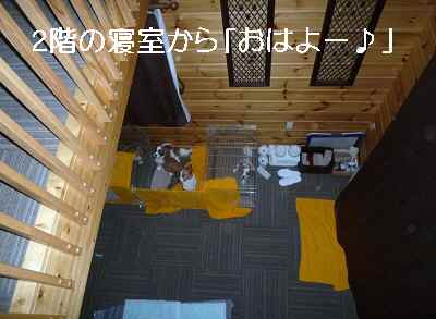 2011_1025_071648-P1110567.jpg