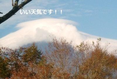 2011_1025_080251-P1110572.jpg