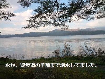 2011_1025_133425-P1110666.jpg