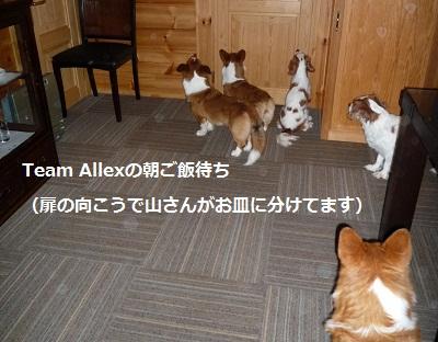 2011_1027_075446-P1110946.jpg