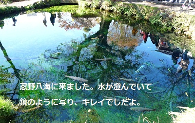 2011_1027_115302-P1110994.jpg