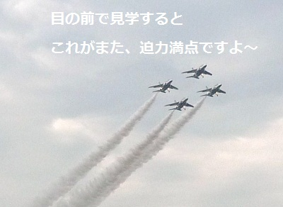 2011_1103_134815-P1120118.jpg