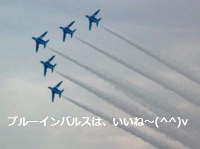 2011_1103_135417-P1120125.jpg