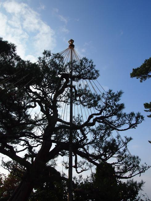 藤田記念庭園2013-12