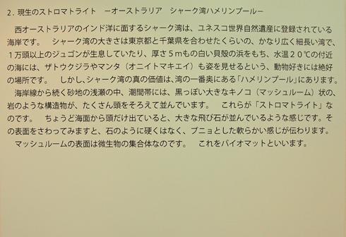 東京ミネラルショー2013-8