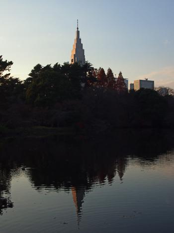 新宿御苑2013-12