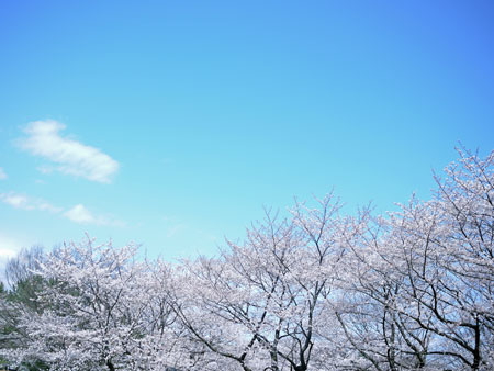 20120410②