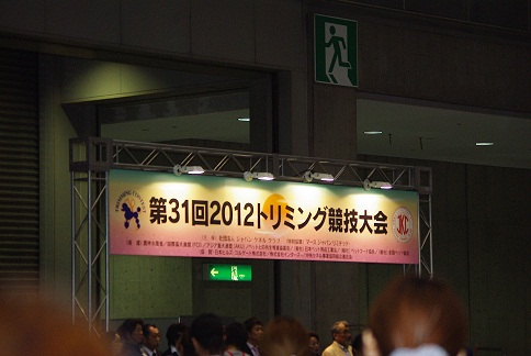 IMGP3305.jpg