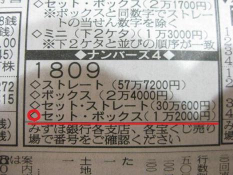 IMG_9399_20111012161751.jpg