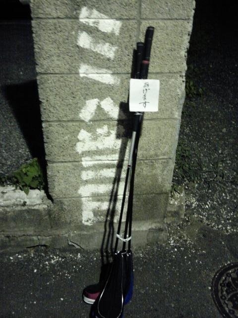 SH3F0166