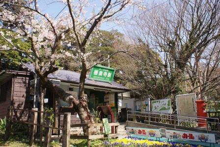 極楽寺駅①