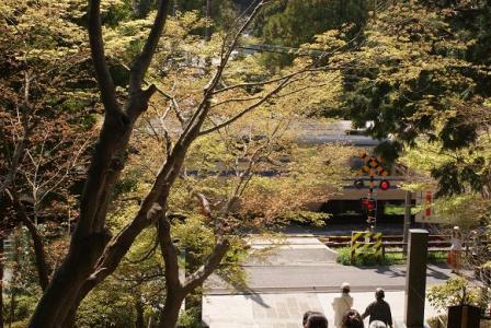 鎌倉円覚寺山門の階段