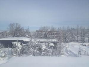 カーテンを開けると、そこは雪国だった