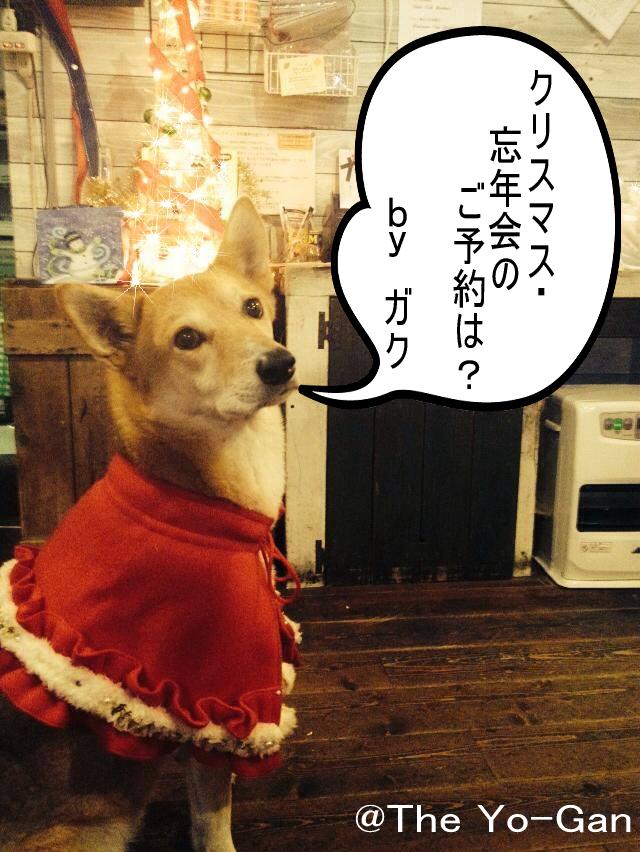 gakuchristmas.png