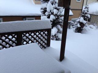 s20140209大雪1