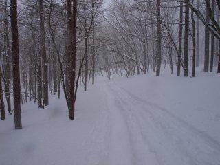 s05雪の花散る1