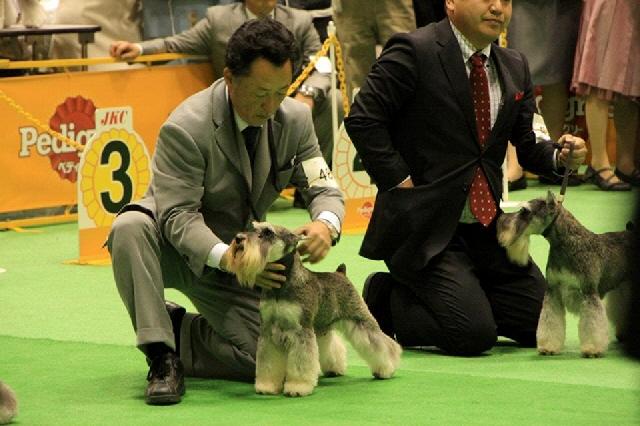 om_jp_20120401_10.jpg