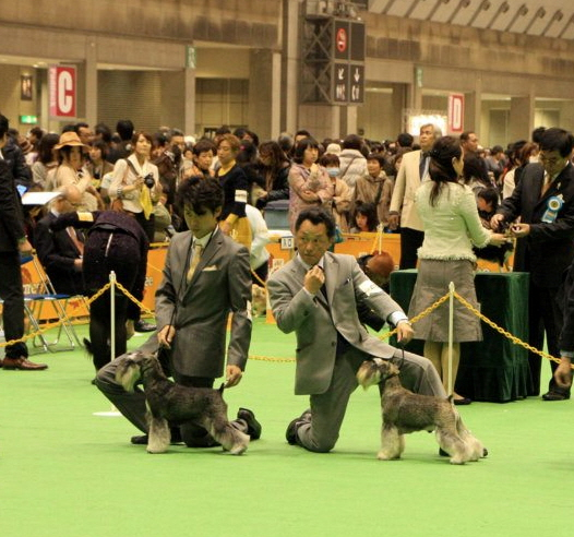 om_jp_20120401_14.jpg