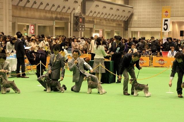 om_jp_20120401_6.jpg