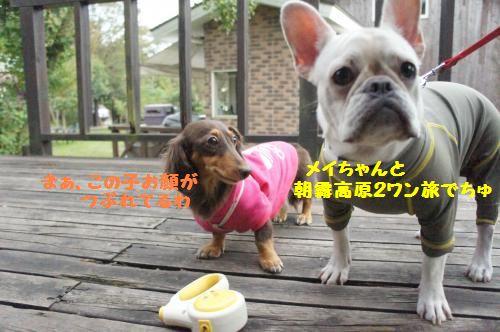024_convert_20111021104714[1]