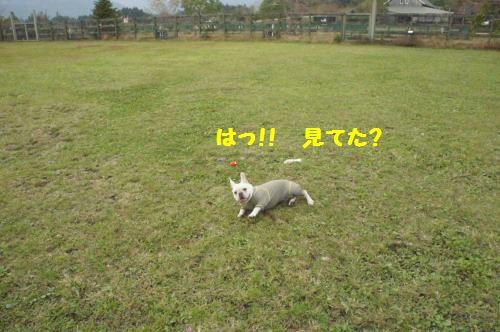 033_convert_20111021102753[1]