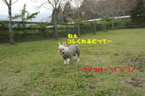 049_convert_20111021103339[1]