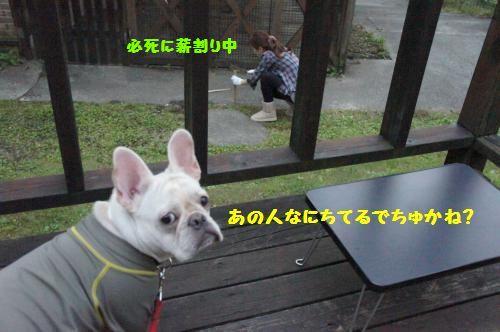 055_convert_20111021103604[1]