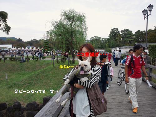 DSC_0635_convert_20111103200252[1]