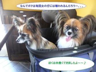 18-16_20111018084752.jpg